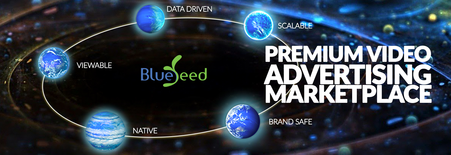 Blueseed Digital Video Ad Network